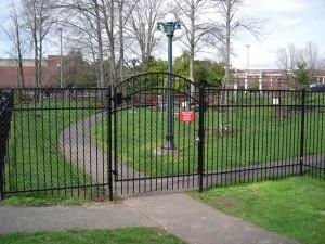 305-COM chain link & Ornamental Iron with walk gate