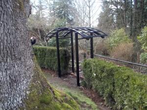 261 Custom ornamental iron Arbor w/gate, Salem, Oregon