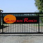 254 Custom ornamental iron gate