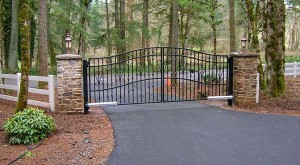 253 Custom ornamental iron gate w/operator