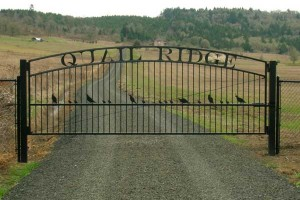 251 Custom ornamental iron gate w/operator