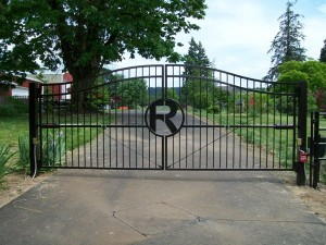 249 Custom ornamental iron gate w/operator