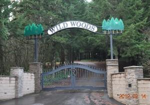 248 Custom ornamental iron gate