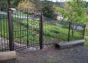 239 Ornamental iron fence w/custom gate