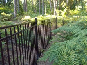 203 Design A-3 Ornamental Iron fence, Detroit, Oregon