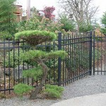 211 Custom Ornamental Iron w/gate