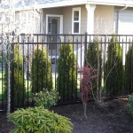 197 Ornamental iron Design C-6