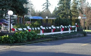 186: 2-rail white vinyl fence