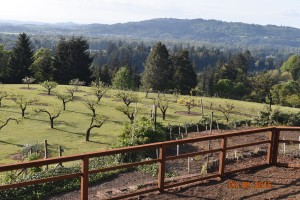 376- custom RES-Fence-wood with welded wire - garden & wild life fence, Salem, Oregon