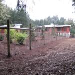147 Deer fence