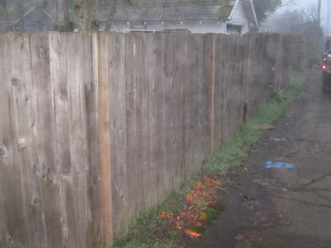 160 Before wood fence
