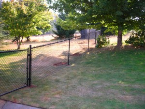 110 Black chain link fence with gate