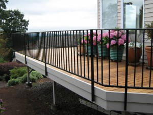 18 Ornamental Iron Railing
