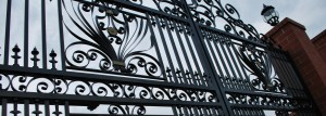 1 Custom Ornamental Gate