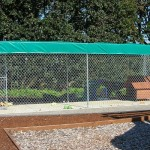 345- chain link-dog kennel with cover